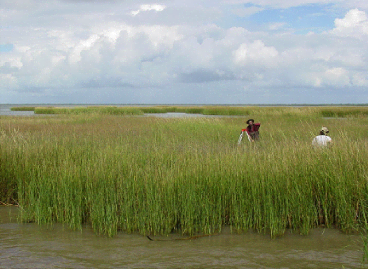 Lower Colorado River and East Matagorda Bay Inflow Assessment